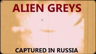 ALIEN GREYS captured in OMSK, Russia ★ UFO / OVNI Best Proof 2014