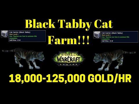Warcraft Gold Farm - Black Tabby Cat Gold Farm 18,000-125,000 GOLD/HR!!!