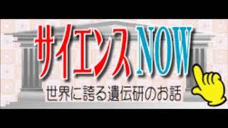 2017.11.5 サイエンスNOW 木村先生「2017年イグ・ノーベル賞」