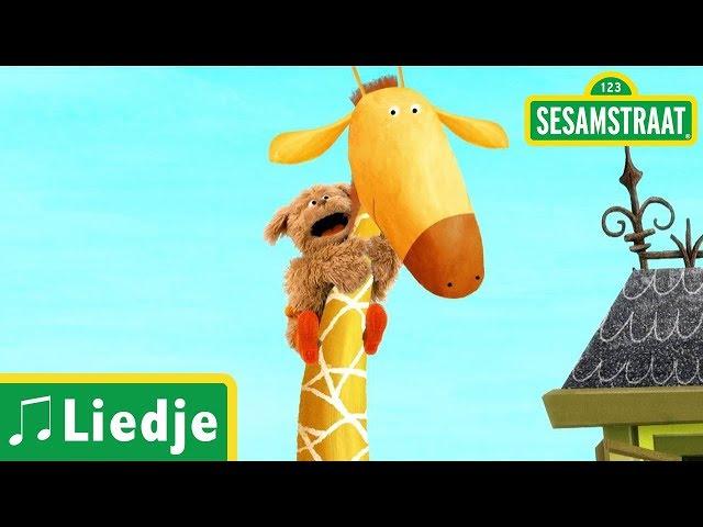 Dikkertje Dap - Kinderliedje - Sesamstraat