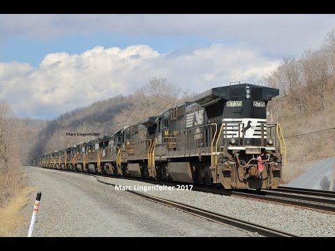 Thumbnail: Another funeral train of NS C40-8s