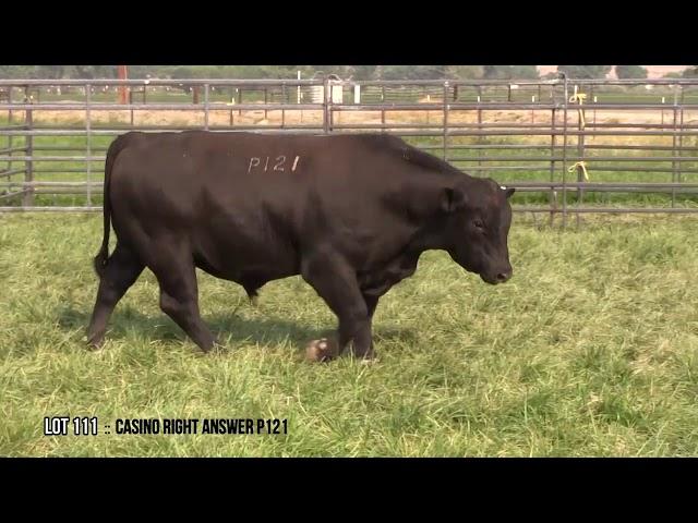 Dal Porto Livestock and Rancho Casino Lot 111