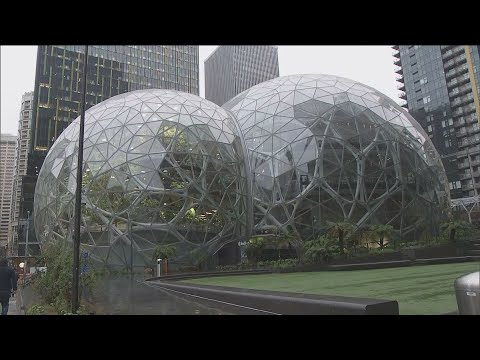 Amazon Cutting Hundreds of Jobs at Seattle HQ