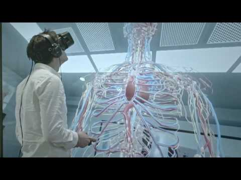 Human Anatomy through Virtual Reality