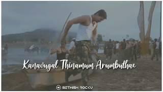 Kutti Puli Kootam Lyrics ||  Whatsapp status video songs tamil