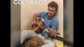 Vet sings to scared dog before surgery -- and he's really good