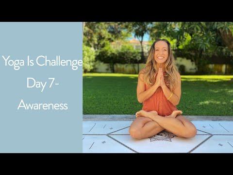 Yoga Challenge Day 7 — Awareness