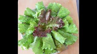 Идеальная закуска Рулетики из листьев салата  Закуска в листьях салата