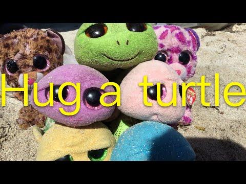 Beanie Boos Music Videos Hug A Turtle