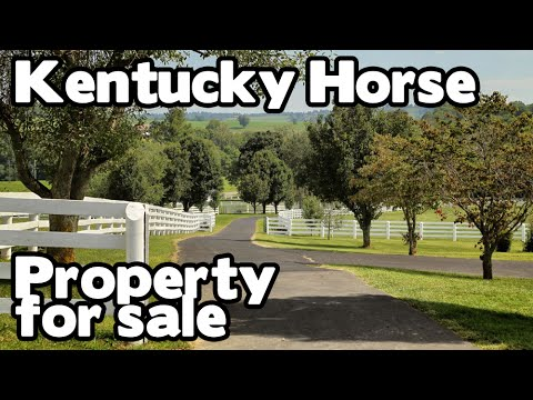 Horse Property for sale in Kentucky 2 homes, barns, ponds, VIEWS! CircleT KY farm