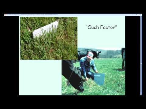 Maximizing Dry Matter Intake on your Organic Dairy Pastures
