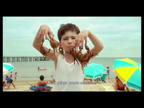 Las vacaciones del pequeño Nicolas (Les vacances du petit Nicolas - Trailer subtitulado español)