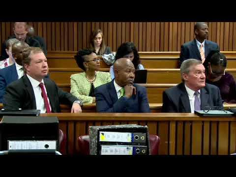 Adv Mkhwebane misled court: SARB Lawyer