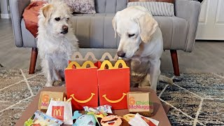 My Dogs First McDonald's Happy Meal!!!