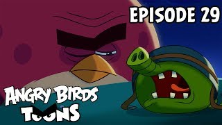 Angry Birds Toons | Nighty Night Terence - S1 Ep29