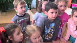 Відео заняття з екології