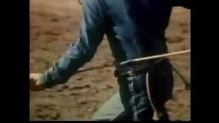 The Divine Madness / Cowboy