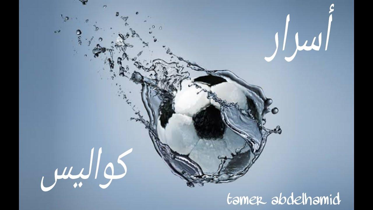 فقره العصفوره مع تامر عبد الحميد حصريات و كواليس و اسرار