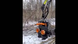 Usewood forest master