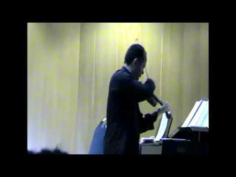 Je t'aime Lara Fabian ( Violin & Piano Cover) LIVE