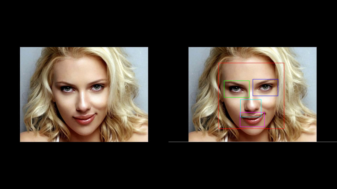 Multiple Face/ Mouth/ Nose/ Eye Detection | Haar Cascade | Object Detection