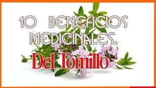 10 Beneficios Medicinales Del Tomillo