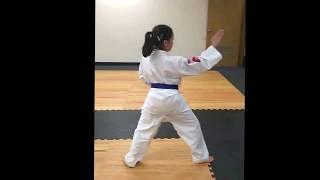 Kids Martial Arts Class Video Blue Belt Form @ Sidekicks San Diego (May 2018)