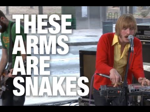 """These Arms are Snakes """"Woolen Heirs"""" 