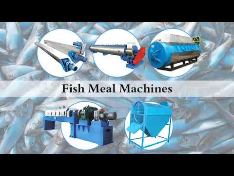 Commercial Fish Meal Machine | Small Fish Meal Processing Projects With High Efficiency In 2020