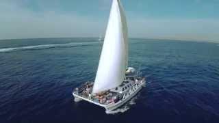 Aristocat Sailing Cruise - Bali Hai Lembongan