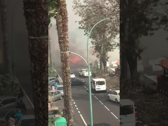 Incendio en el municipio de Santa Úrsula (Tenerife).