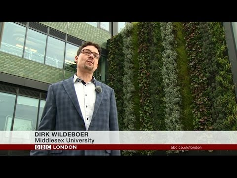 Can living walls reduce air pollution? BBC News investigates at Middlesex University