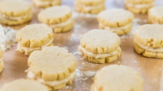 Cornmeal + Honey Cookies  February Cookie of the Month