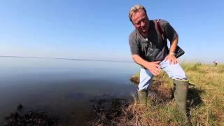 plaquemines parish coastal zone director p j hahn in bay jimmy