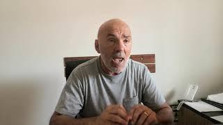 """Franco Guglielmi: """"Contro natura raccogliere le olive ad agosto"""""""