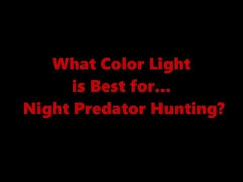 Predator Hunting @ Night: What Color Light is Best (Red - Green - White)?