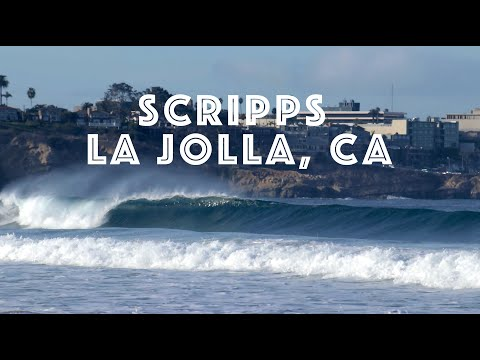 Surfing Scripps (4-7 Feet)