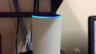 Amazon Echo アレクサの扱い方( radiko ラジコ偏)