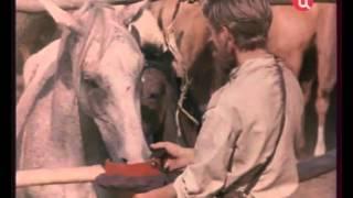 Ищи ветра (1978) фильм смотреть онлайн