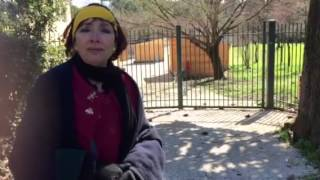 6 Marzo 2015 - Intervista Anna Maria Procacci