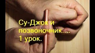 Урок 01 Шея, грудной отдел, поясничный и Су Джок основная система