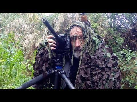Kingfisher Sits On Photographers Head
