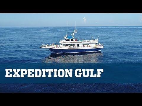 Florida Sport Fishing TV - EXPEDITION GULF part 1 of 2.
