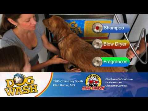 Glen burnie carwash dog wash youtube glen burnie carwash dog wash solutioingenieria Gallery