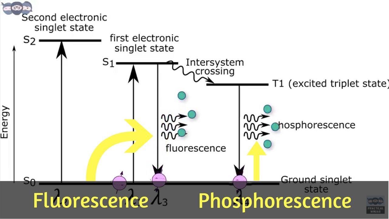 hight resolution of basics and principle of fluorescence phosphorescence measurement learn under 5 min ai 06