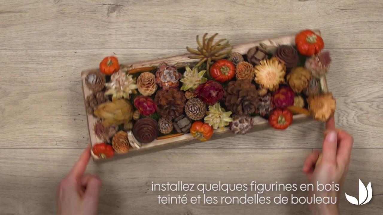 DIY automne : plateau décoratif naturel - Jardinerie Truffaut TV