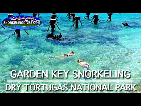 Snorkeling Garden Key | Dry Tortugas National Park