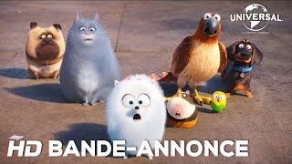 Comme Des Bêtes / Bande-annonce officielle 2 VF [Au cinéma le 27 juillet 2016]