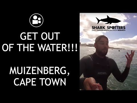 Shark Siren at Muizenberg Beach | Cape Town Vlog