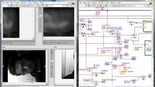Tutorial Vision & Motion LabView
